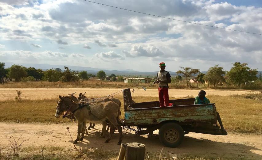 2017 Global Health Photo Contest: Neeka Nazari, South Africa