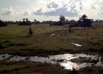 Photo Credit: CGH Scholar, Emily Evans, Uganda