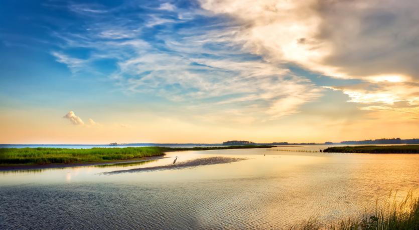 Chesapeke Bay, Virginia; Courtesy of the Global Water Initiative
