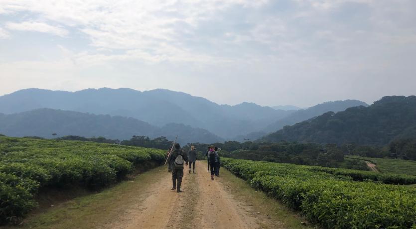 CGH Scholars in Rwanda: Photo Credit, Rees Huggins